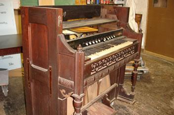 organ before